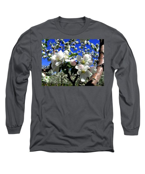Orchard Ovation Long Sleeve T-Shirt
