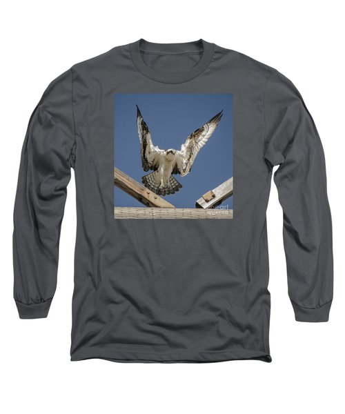 Osprey Landing Long Sleeve T-Shirt by Dale Powell
