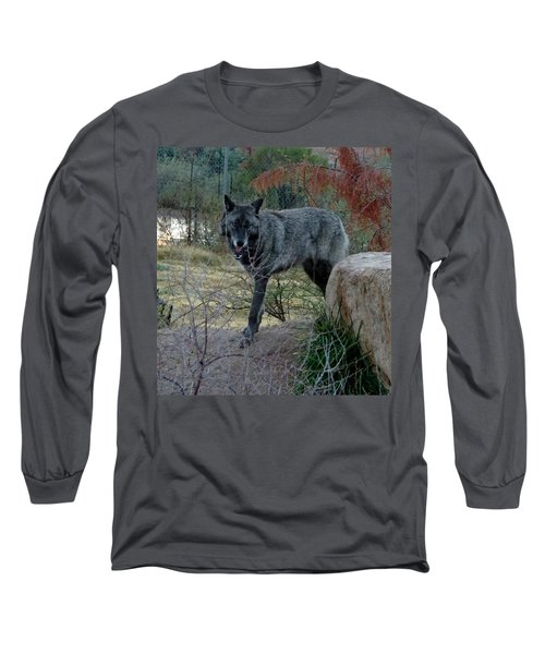 Out Of Africa Black Wolf Long Sleeve T-Shirt