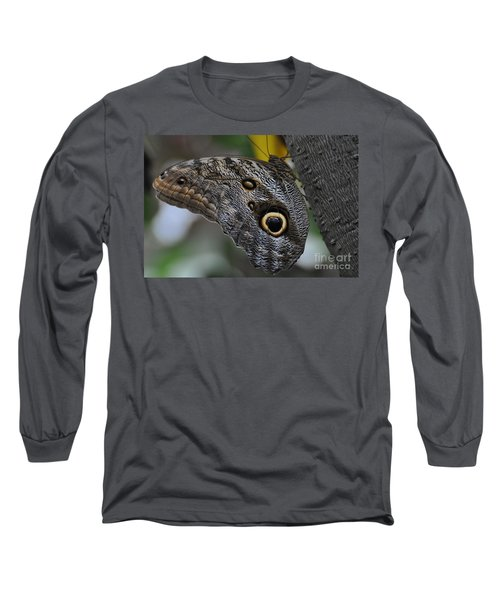 Long Sleeve T-Shirt featuring the photograph Owl Butterfly by Bianca Nadeau