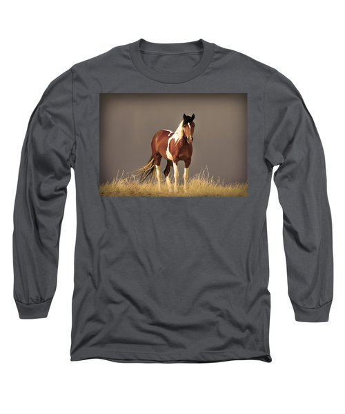 Paint Filly Wild Mustang Sepia Sky Long Sleeve T-Shirt