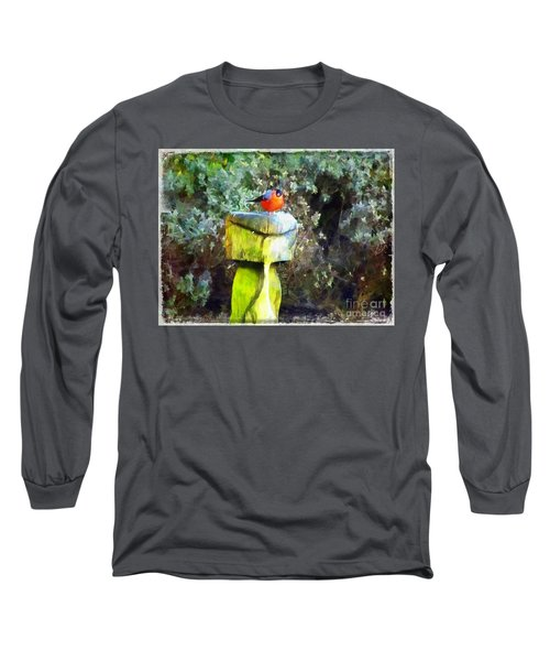Painted Bullfinch S2 Long Sleeve T-Shirt
