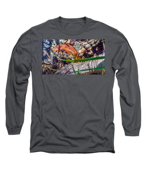 Pantherophis Guttatus Long Sleeve T-Shirt by Rob Sellers