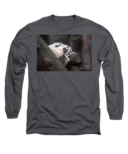 Paws For A Nap Long Sleeve T-Shirt by Ray Warren