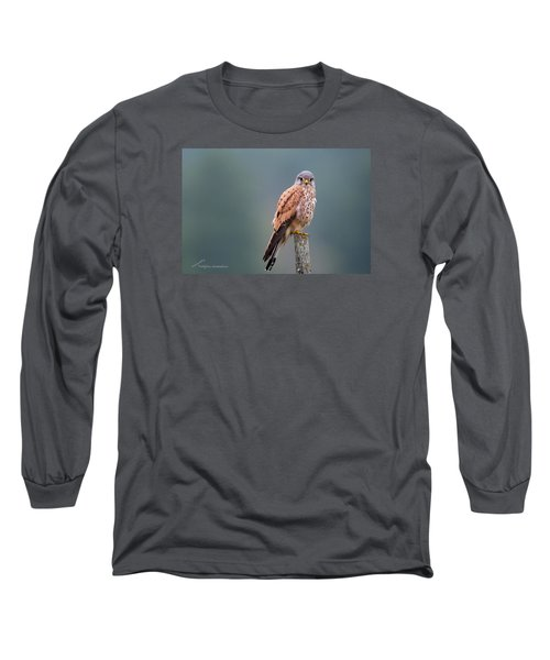 Perching Long Sleeve T-Shirt by Torbjorn Swenelius