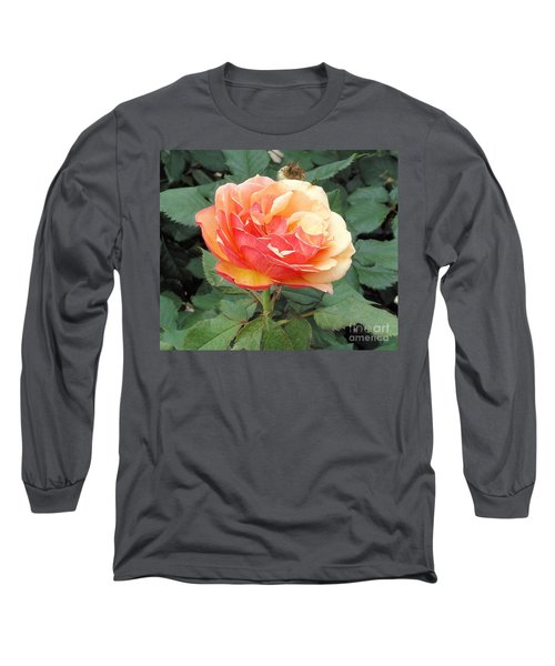 Long Sleeve T-Shirt featuring the photograph Perfect Rose by Janette Boyd