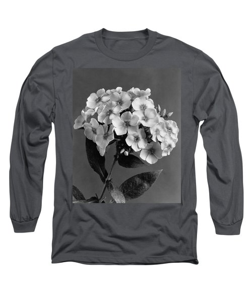 Phlox Blossoms Long Sleeve T-Shirt