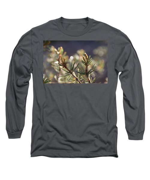 Long Sleeve T-Shirt featuring the photograph Pine by David S Reynolds