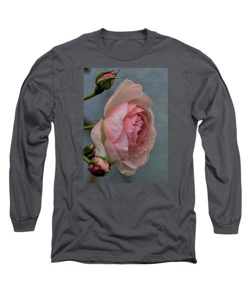 Long Sleeve T-Shirt featuring the photograph Pink Rose by Leif Sohlman