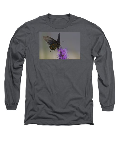 Pipevine Alights Long Sleeve T-Shirt by Shelly Gunderson