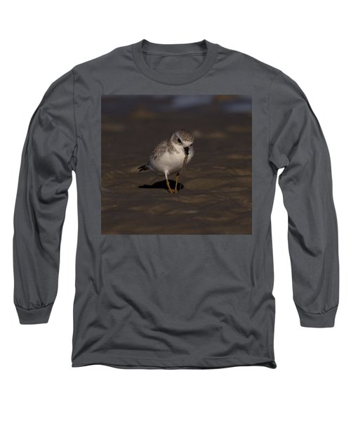 Piping Plover Photo Long Sleeve T-Shirt by Meg Rousher