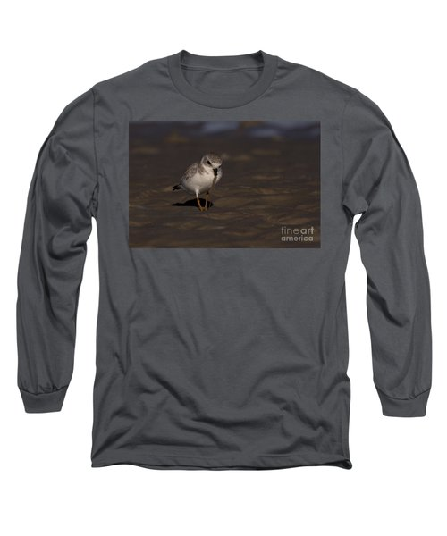 Piping Plover Photo Long Sleeve T-Shirt