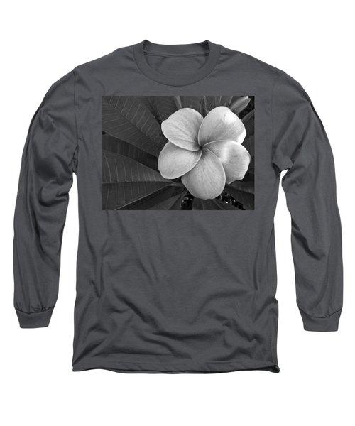 Plumeria With Raindrops Long Sleeve T-Shirt
