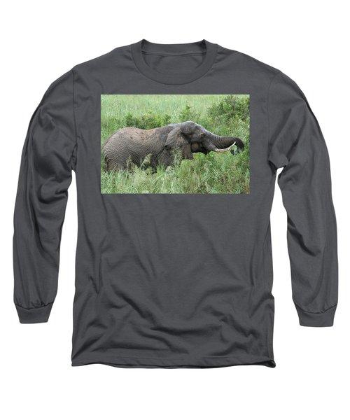 Post Mud Bath Appetite Long Sleeve T-Shirt
