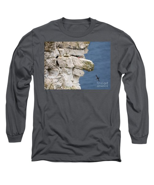 Puffin Peeps From Under A Rock Long Sleeve T-Shirt
