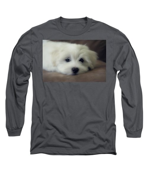 Puppy Eyes Long Sleeve T-Shirt by Melanie Lankford Photography