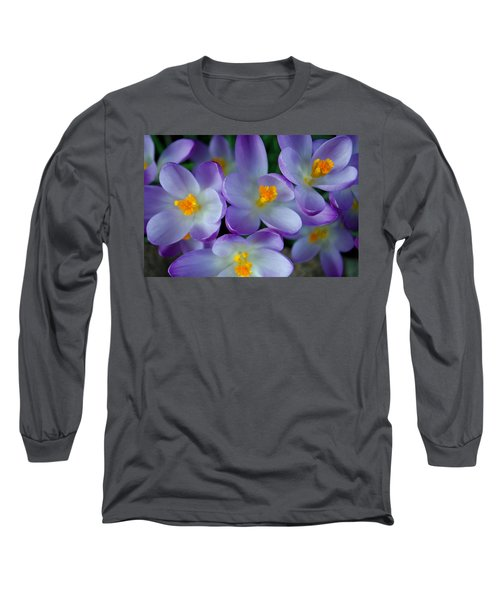 Purple Crocus Gems Long Sleeve T-Shirt