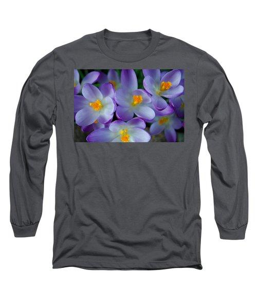 Purple Crocus Gems Long Sleeve T-Shirt