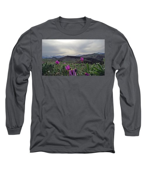 Long Sleeve T-Shirt featuring the digital art Purple Spring In The Big Horns by Cathy Anderson