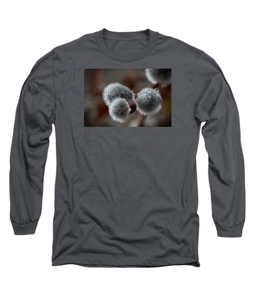 Pussy Willow Long Sleeve T-Shirt by Joel Loftus