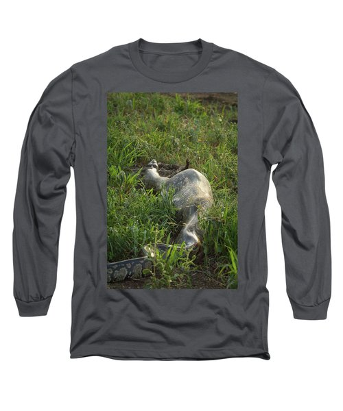 Python With Reedbuck Inside Digesting Long Sleeve T-Shirt