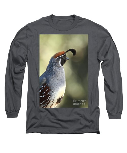Quail Portrait Long Sleeve T-Shirt by Bryan Keil