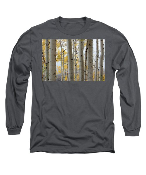 Rainy Day Aspen  Long Sleeve T-Shirt