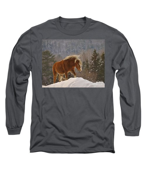 Rancher's Dream Long Sleeve T-Shirt