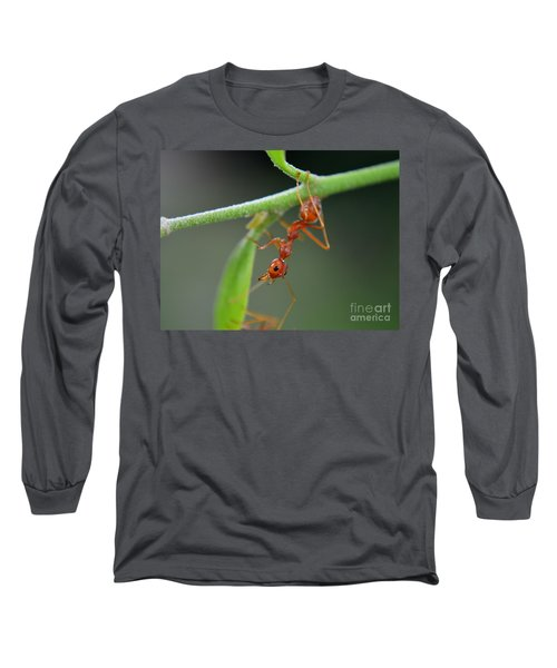 Red Ant Long Sleeve T-Shirt by Michelle Meenawong
