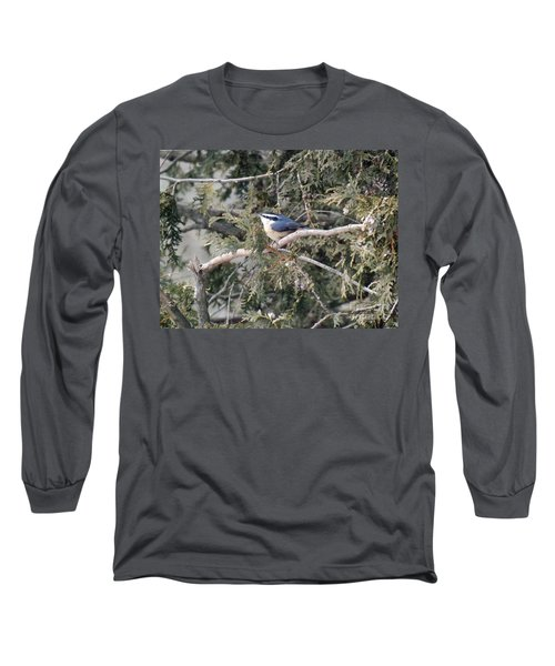 Long Sleeve T-Shirt featuring the photograph Red Breasted Nuthatch by Brenda Brown