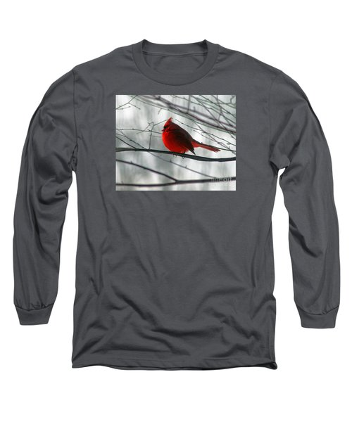 Red Cardinal On Winter Branch  Long Sleeve T-Shirt
