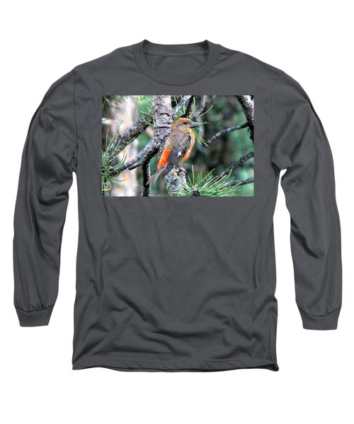 Red Crossbill On Pine Tree Long Sleeve T-Shirt by Marilyn Burton