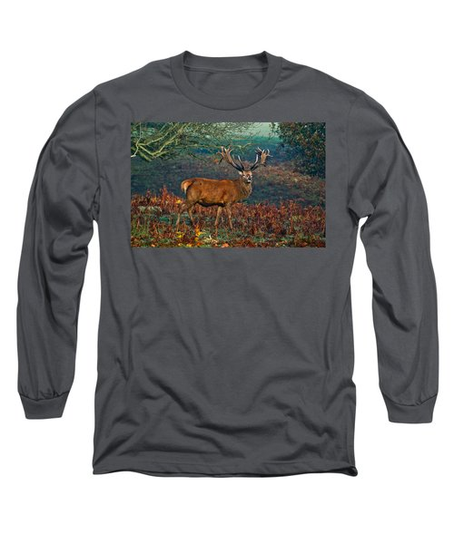 Red Deer Stag In Woodland Long Sleeve T-Shirt by Scott Carruthers