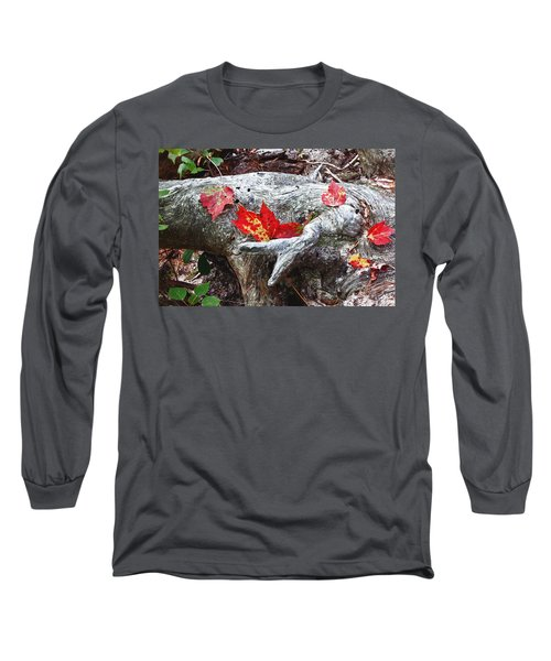 Red Fall Against Grey Long Sleeve T-Shirt