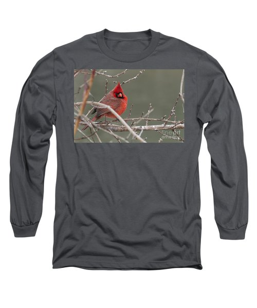 Red In Winter Long Sleeve T-Shirt