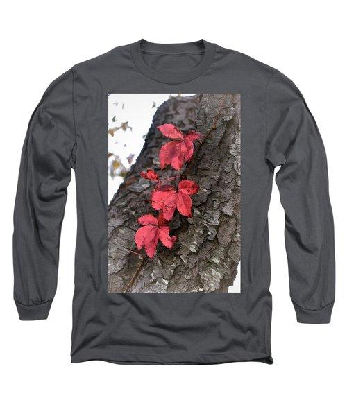 Red Leaves On Bark Long Sleeve T-Shirt