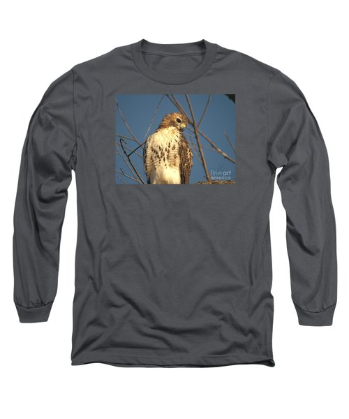 Red Tailed Hawk  Long Sleeve T-Shirt by Susan  Dimitrakopoulos