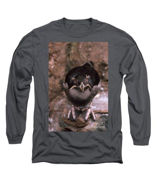 Rhinoceros Auklet Long Sleeve T-Shirt