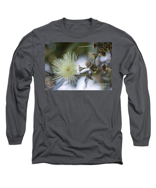 Rose Apple Blossom Long Sleeve T-Shirt by Kerryn Madsen-Pietsch