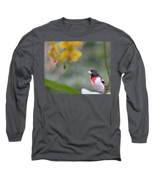 Long Sleeve T-Shirt featuring the photograph Rose Breasted Grosbeak Photo by Luana K Perez
