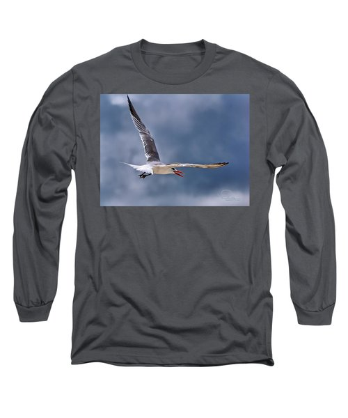 Royal Tern 1 Long Sleeve T-Shirt by Ludwig Keck