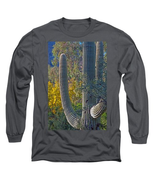 Saguaro Fall Color Long Sleeve T-Shirt by Tam Ryan