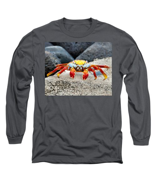 Sally Lightfoot Crab Long Sleeve T-Shirt by William Beuther