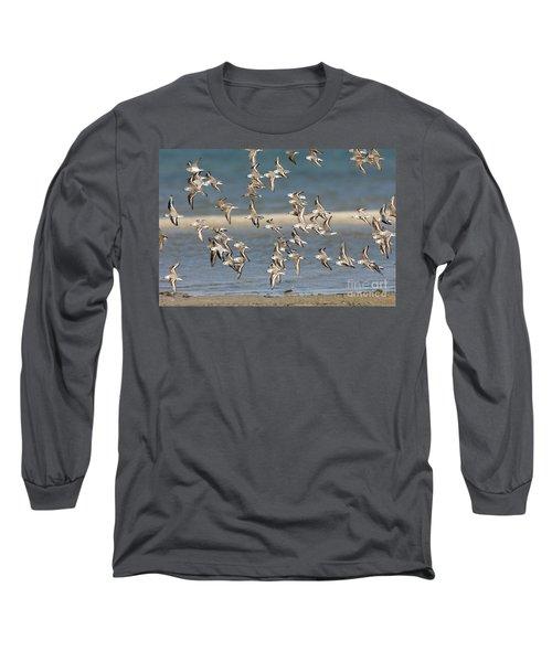 Sanderlings And Dunlins In Flight Long Sleeve T-Shirt