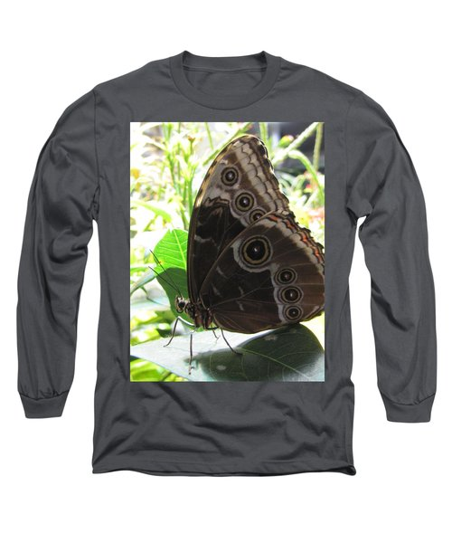 Scarce Morpho Long Sleeve T-Shirt by Jennifer Wheatley Wolf