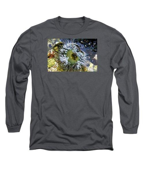 Sea Anemone Long Sleeve T-Shirt