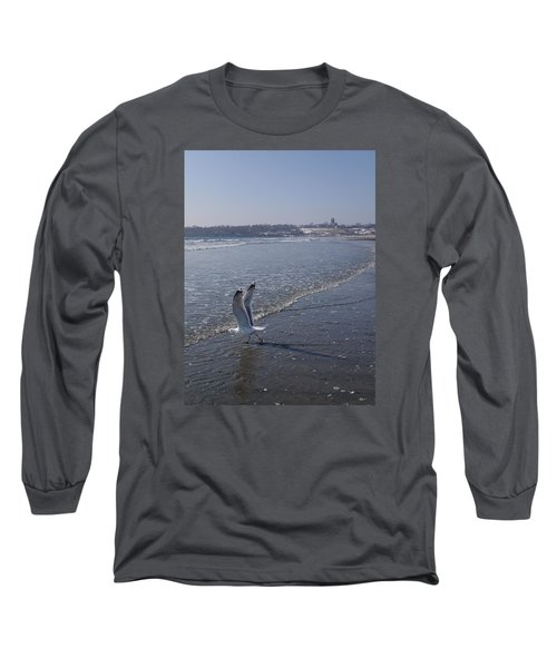 Long Sleeve T-Shirt featuring the photograph Seagull 1 by Robert Nickologianis