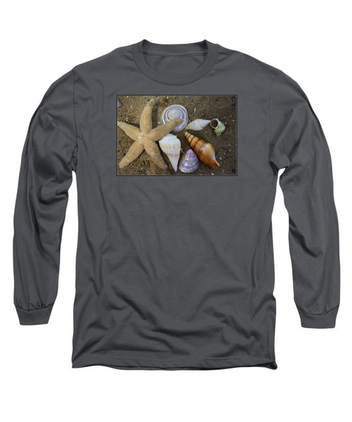 Seashells And Star Fish Long Sleeve T-Shirt by Dora Sofia Caputo Photographic Art and Design