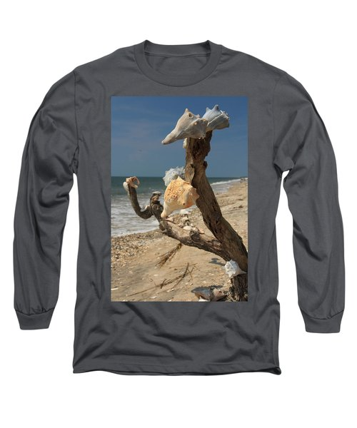 Shell Art Long Sleeve T-Shirt