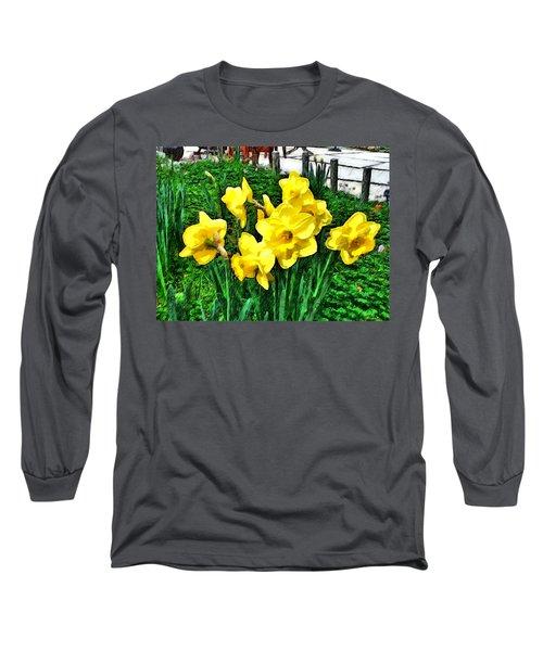 Shy Daffodils  Long Sleeve T-Shirt
